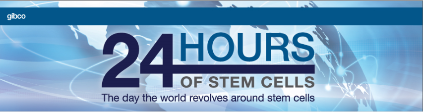 24 hours of Stem Cells.png